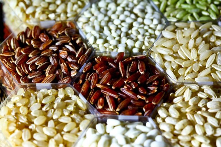 The-Rise-of-Ancient-Grains-Rice_grains_IRRI-768x512